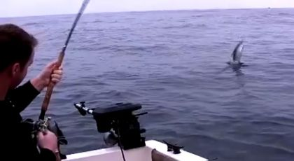 Rare video footage while King Salmon fishing!